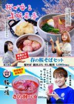 食事処梅寿庵 春の桜まつり開始!